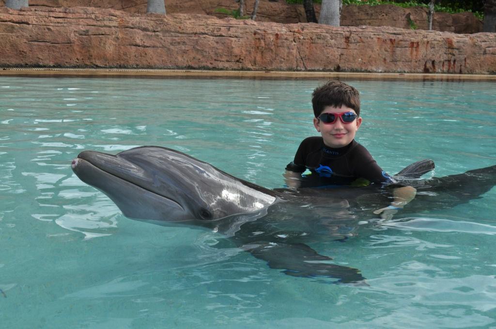 Chris Sendi - Boowah and the Dolphin